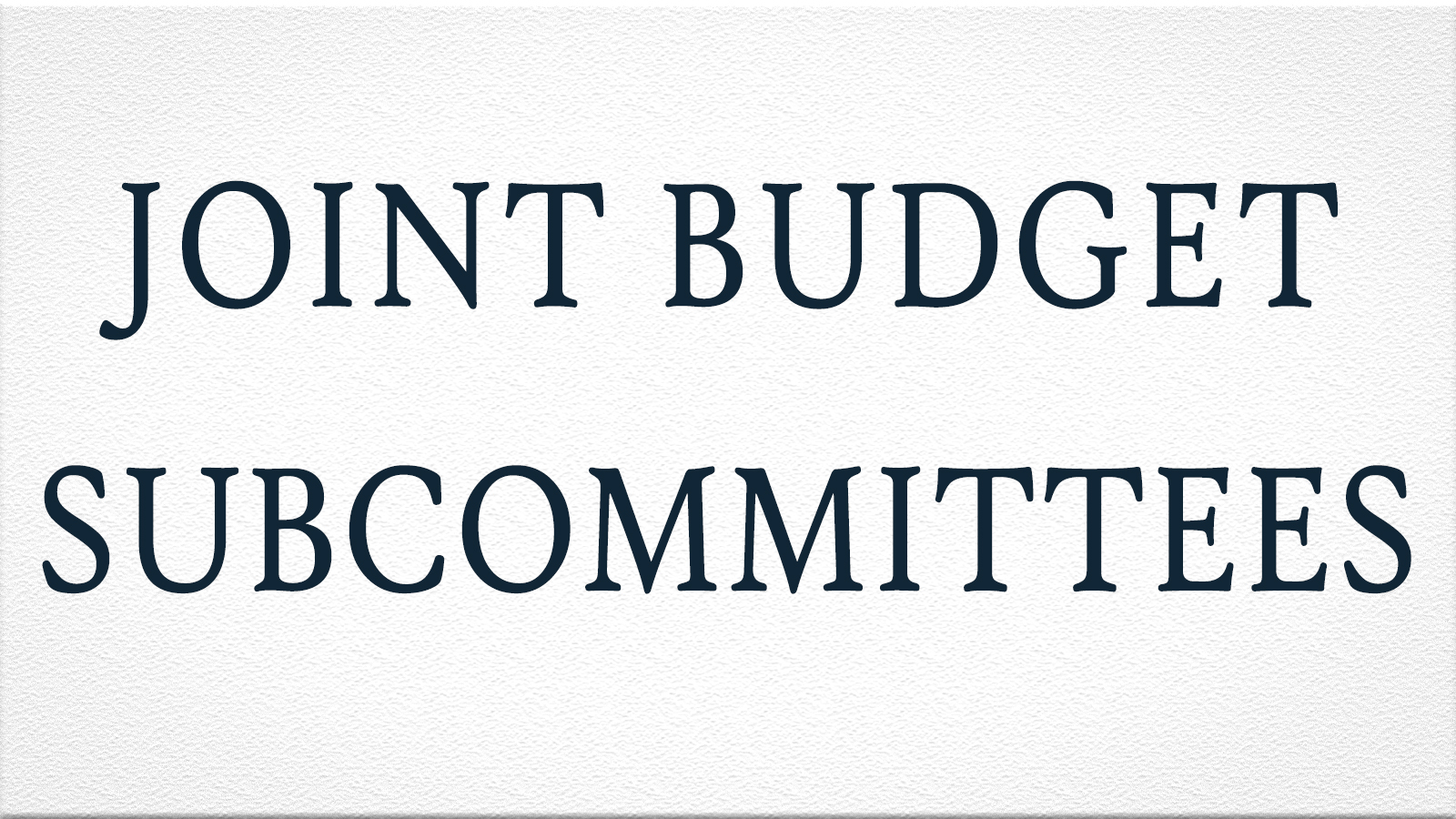 Joint Budget Subcommittees